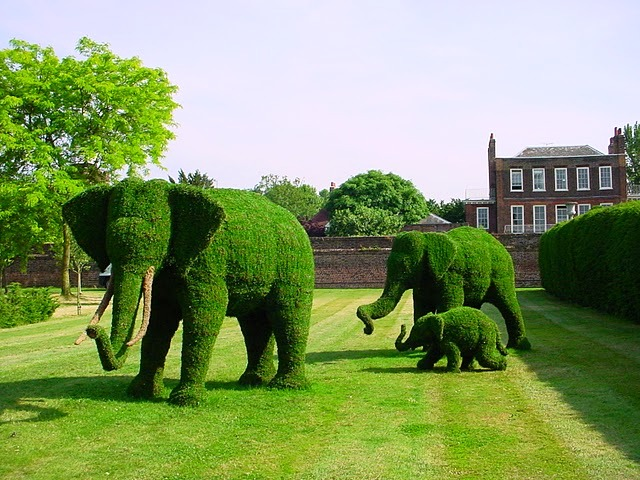 animals topiary