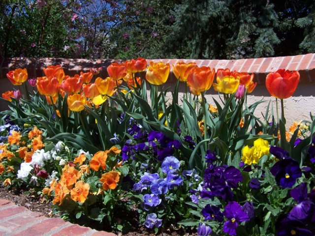 flowers landscape design