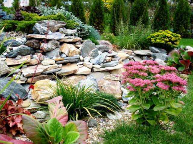How to design a low maintenance garden landscape the for Garden design plants