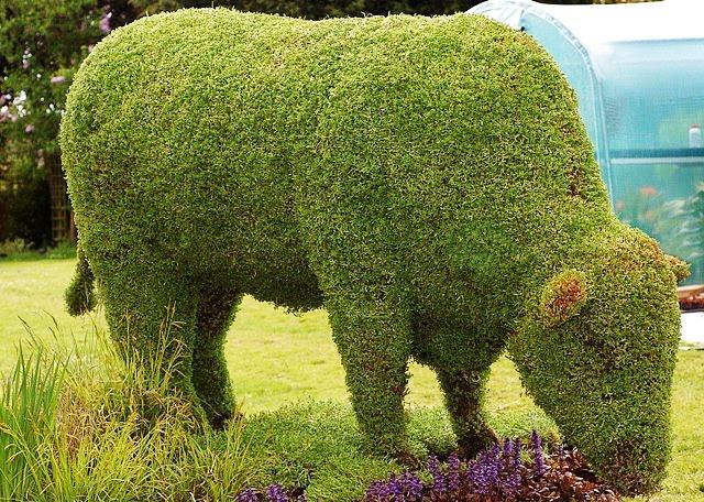 topiary bull
