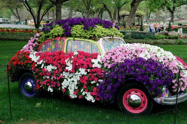 topiary car