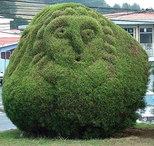 topiary character