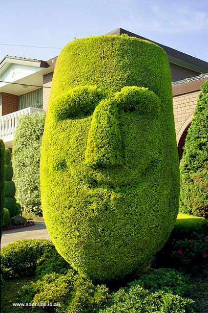 topiary happy man
