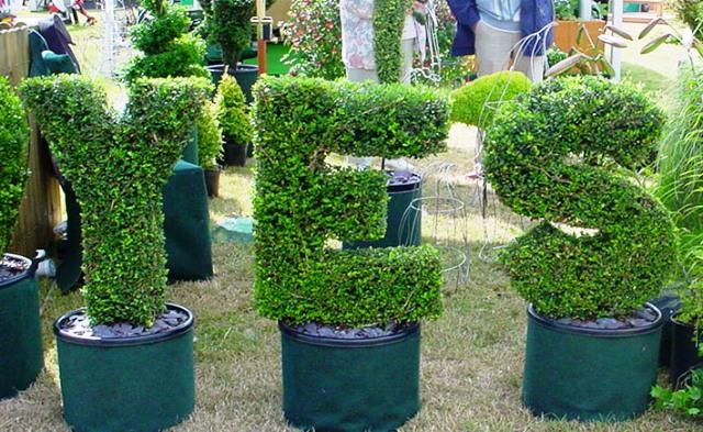 topiary logo