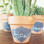 Creative Plant Labels