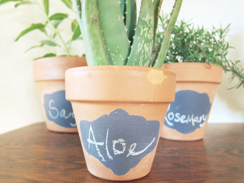 creative plant labels