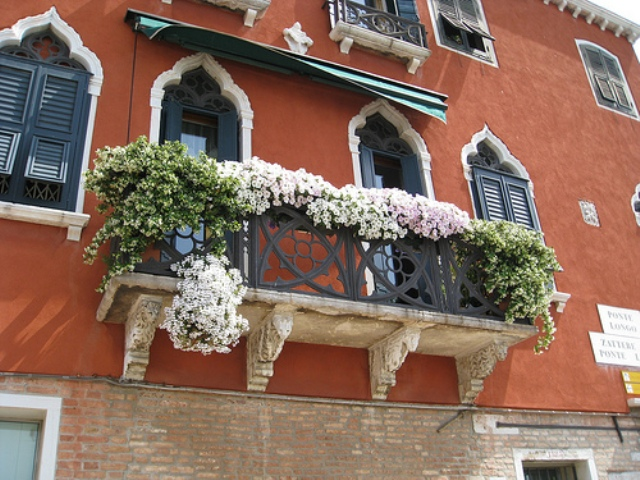 flowers in balcony garden