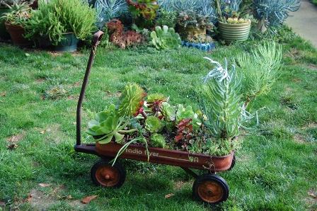 DIY Succulent Wagon