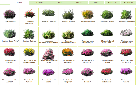 Plants in GardenPuzzle