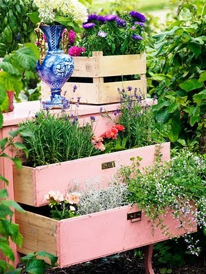 Creative DIY Gardening Idea