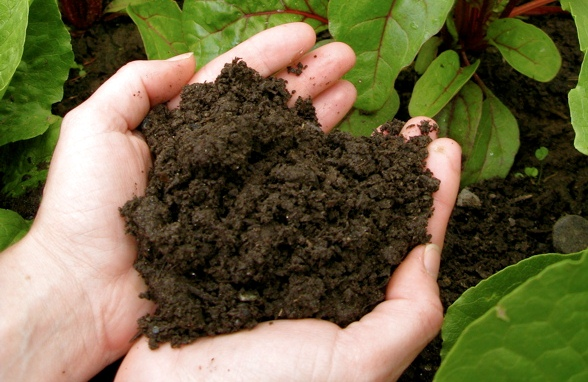 Preparing Garden Compost at Home