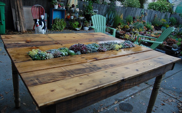 Creative DIY Succulent Pellet Table