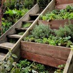Creative DIY Gardening Idea # 8