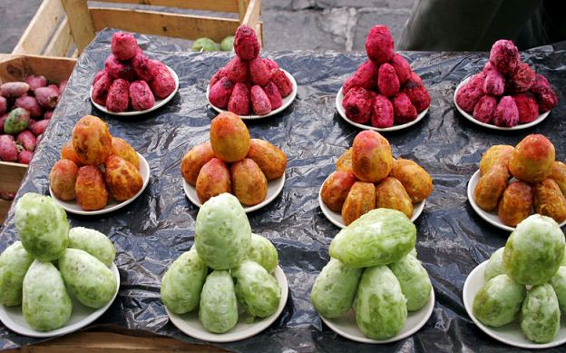 Opuntia, Prickly Pear Fruit