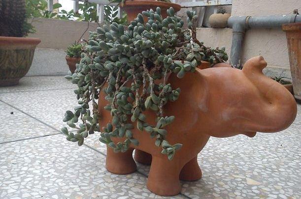 Terracotta Elephant