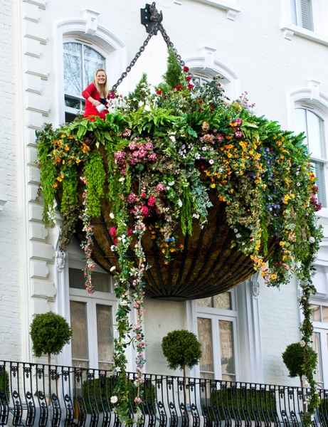 Large Hanging Basket