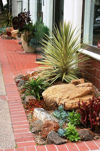 9 examples of beautiful small space gardens for Garden design with succulents