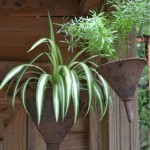 Creative DIY Gardening Idea # 10: Funnel Planters