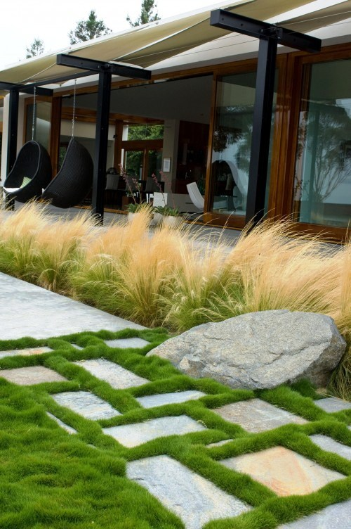Growing grasses in a bed