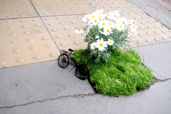 Mini Pothole Garden with Daisy and a Bicycle