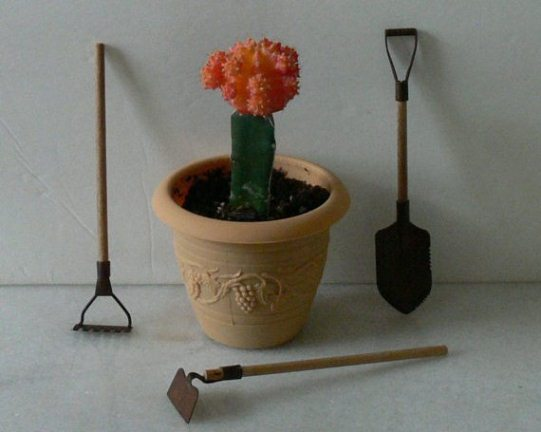 Miniature Gardening Tools