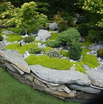 Creative garden landscape design and rock and moss