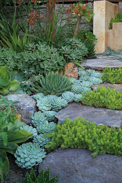 Creative diy gardening idea 20 landscaping with succulents landscaping with succulents workwithnaturefo