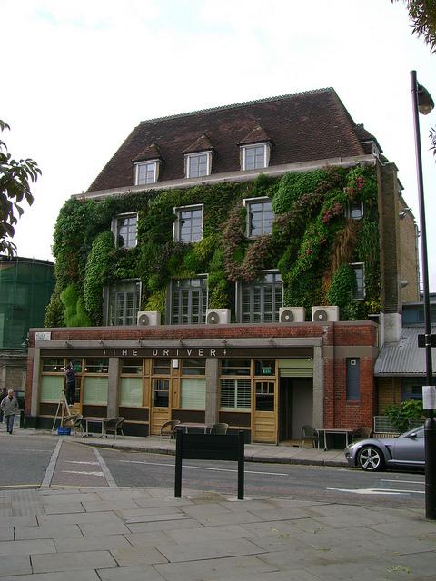 Vertical Garden Hotel Wall