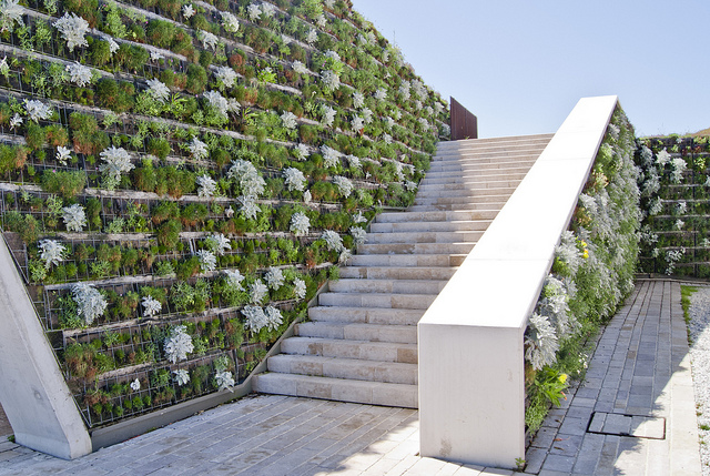 9 Examples of Amazing Vertical Wall Gardens