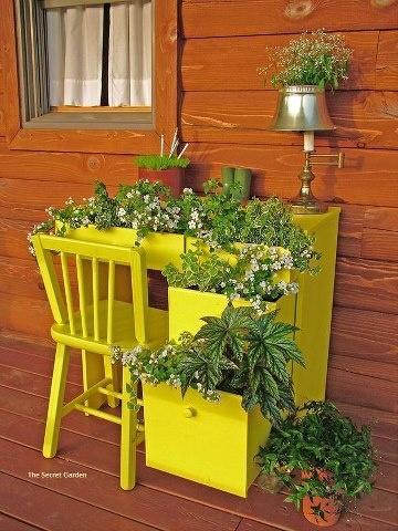 Creative Desk Garden