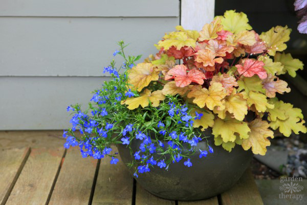 Decorating with Container Garden